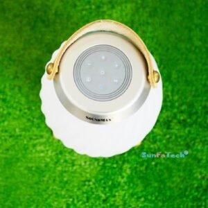 Loa Bluetooth SoundMax AL22